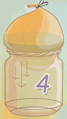яйцо в бутылке