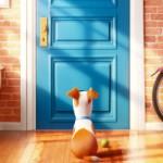 Настольная игра: Тайная жизнь Домашних Животных