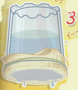 эксперимент ткань и вода